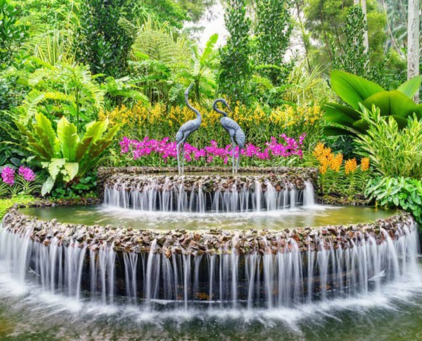 National-Orchid-Garden-Singapore-1